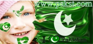 pakistan flag face maker