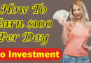 How To Earn $100 In 24 Hours? | No Investment