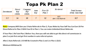 How To Earn $500 Per Month From Topa Pk (www.TopaPk.store)