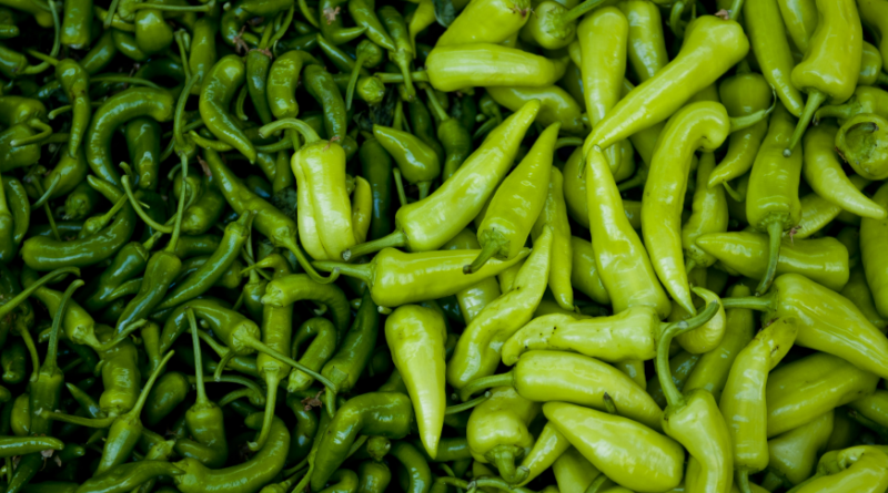 Benefits of Green Chillies