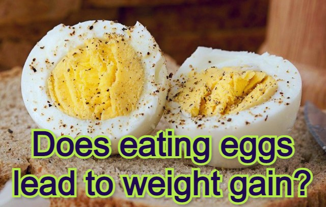 Does eating eggs lead to weight gain?