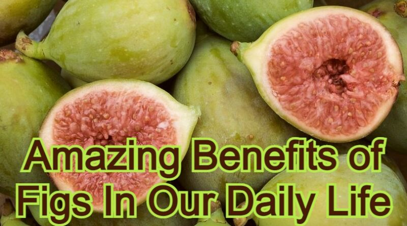 Amazing Benefits of Figs In Our Daily Life