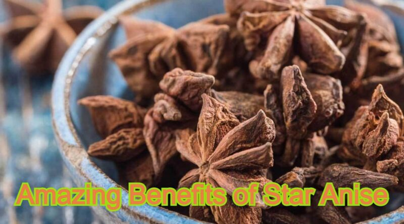 Amazing Benefits of Star Anise