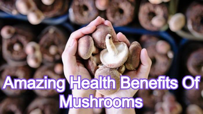 Amazing Health Benefits Of Mushrooms