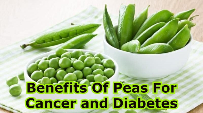 Benefits Of Peas For Cancer and Diabetes