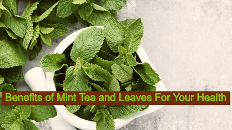 Benefits of Mint Tea and Leaves For Your Health