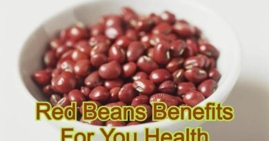 Red Beans Benefits For You Health