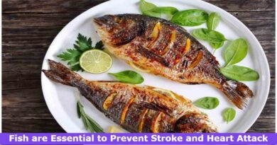 Fish are Essential to Prevent Stroke and Heart Attack