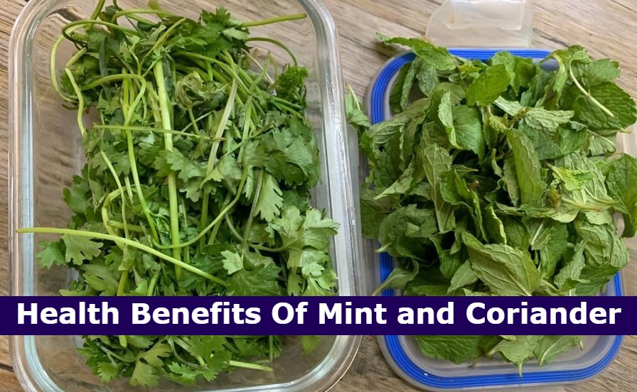 Health Benefits Of Mint and Coriander