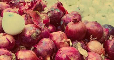 Benefits Of Eating Onion In Summer