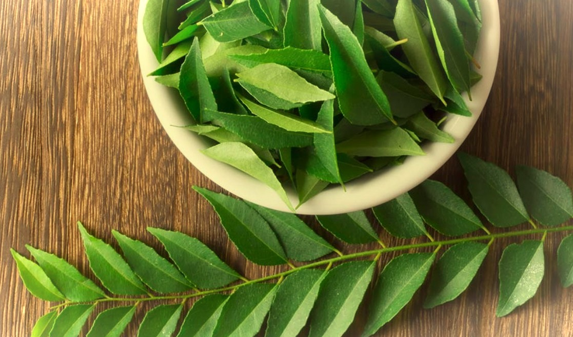 6 Health Benefits of Curry Leaves