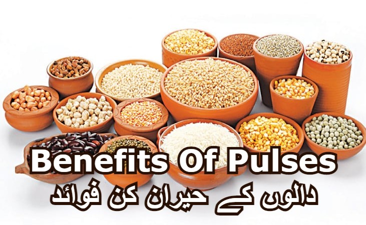 Health Benefits of Pulses (Best For Weight Loss)