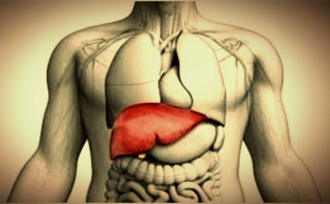 How To Make Liver Healthy? [Amazing Solution]
