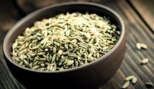 Use Of Fennel Reduces The Intensity Of Heat