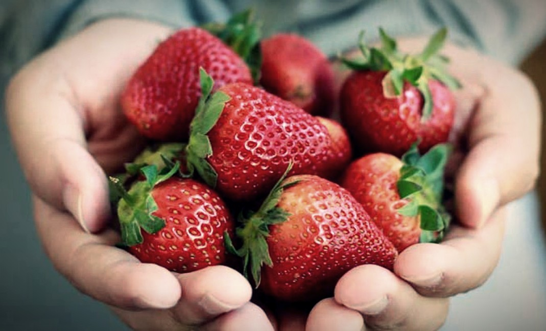 Strawberry Benefits For Heart